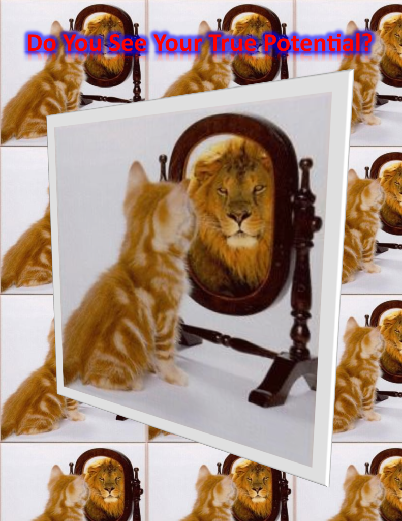 Cat Seeing Lion in Mirror picture
